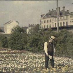 Unternehmens Fabrik im Jahr 1910